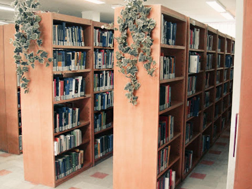 ساکن شهری که کتابخانهاش من را می شناسد
