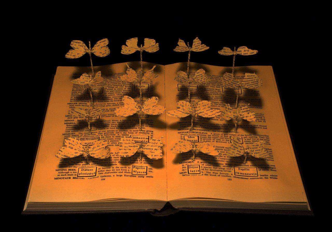 تأثیر کتابخوانی سيد حسين نصر شفیعی کدکنی لیلی گلستان موسوی گرمارودی محمدجعفر یاحقی